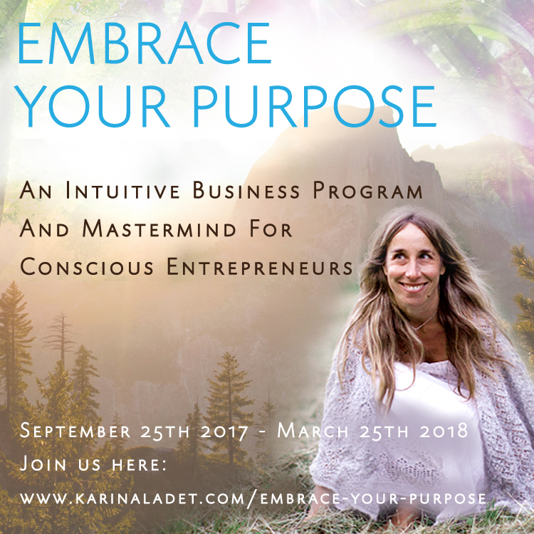 embrace your purpose intuitive business program
