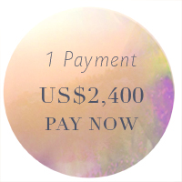 button sml 1 payment updated