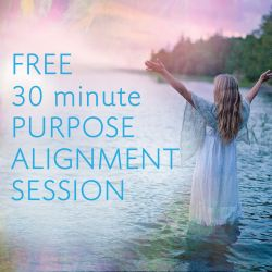 Free 30 minute Alignment Session