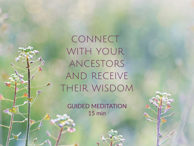 connect with your ancestors and receive their wisdom