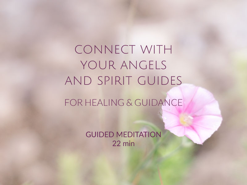 connect with your angels and spirit guides