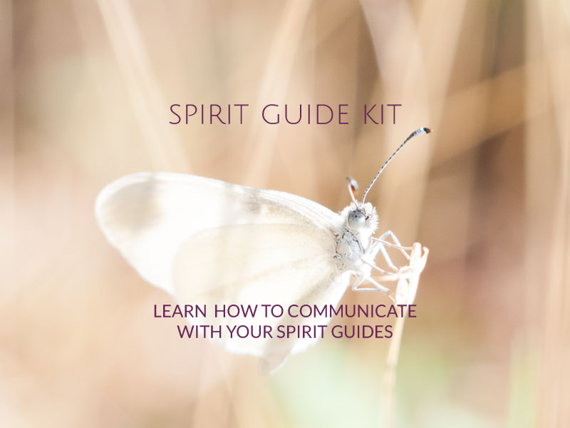 Spirit Guide Kit